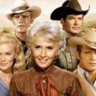Barbara Stanwyck's The Big Valley S2  and S3 on DVD